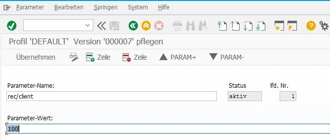 Profilparameter rec/client in der Transaktion RZ10 setzen, um die Protokollierung in SAP ERP zu aktivieren.