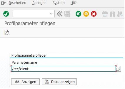 Profilparameter rec/client in RZ11 anzeigen lassen. Dieser Parameter muss für eine Protokollierung in SAP ERP gesetzt sein.