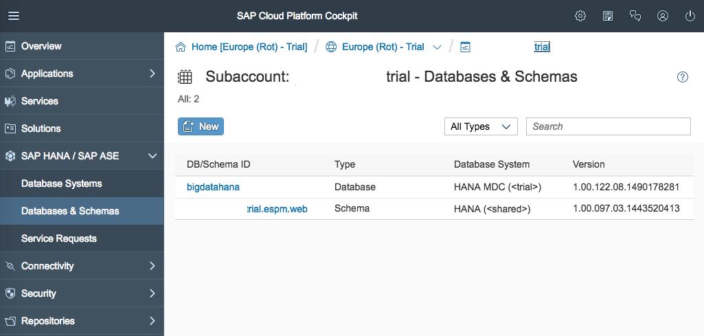 Überblick SAP Cloud Platform