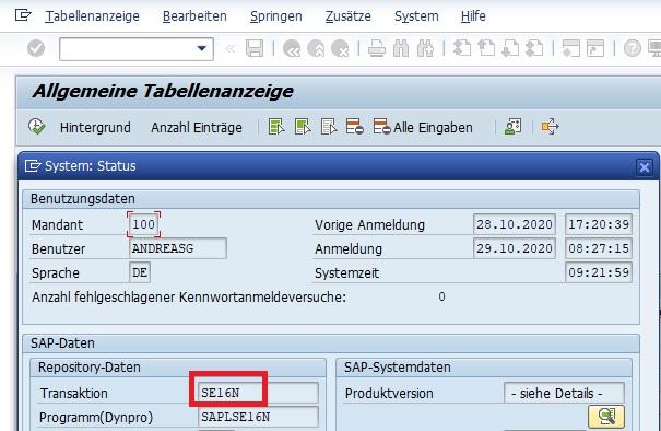 """Anschließend erhält man eine wichtige Status-Anzeige. Neben den Rechnerdaten, den Datenbankdaten und den SAP-Systemdaten erhält man auch die notwendigen Repository-Daten. Hier wird in dem Feld """"Transaktion"""" der aktuelle Transaktionscode angezeigt."""