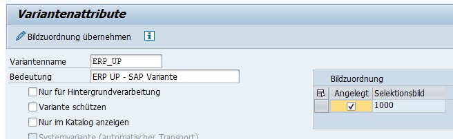 """Anschließend gibt man einen Variantennamen und deren Bedeutung an. Der Variantenname ist damit die eindeutige Identifikation und kann für den Report nur einmal vergeben werden. Die SAP Variante wird durch Klick auf den Speicher-Button oder """"Strg + S"""" gespeichert."""