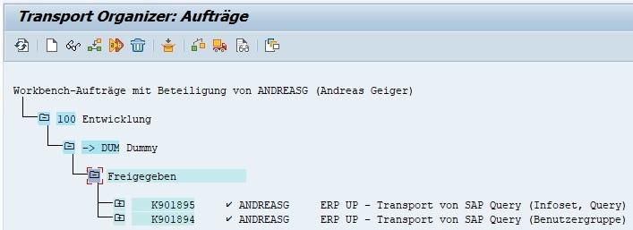 Bei beiden Fällen jedoch muss man die erstellten Transportaufträge im Transport Organizer (Transaktion SE09 oder SE10) freigeben.
