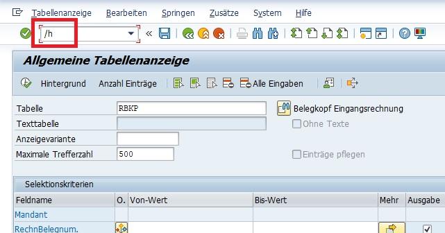 """Zuerst ruft man dafür den Data Browser mit der Transaktion SE16N auf. Anschließend gibt man die Tabelle ein, dessen Datensätze man ändern möchte. Das Debugging kann man aufrufen, indem man im Kommandofeld bzw. der OK-Code-Zeile """"/h"""" eingibt."""