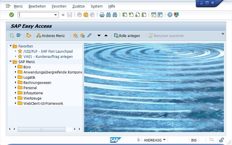 Startbildschirm in der SAP GUI